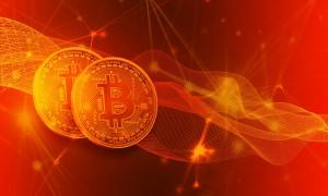 spezielle Marktstruktur bei Bitcoin Revolution